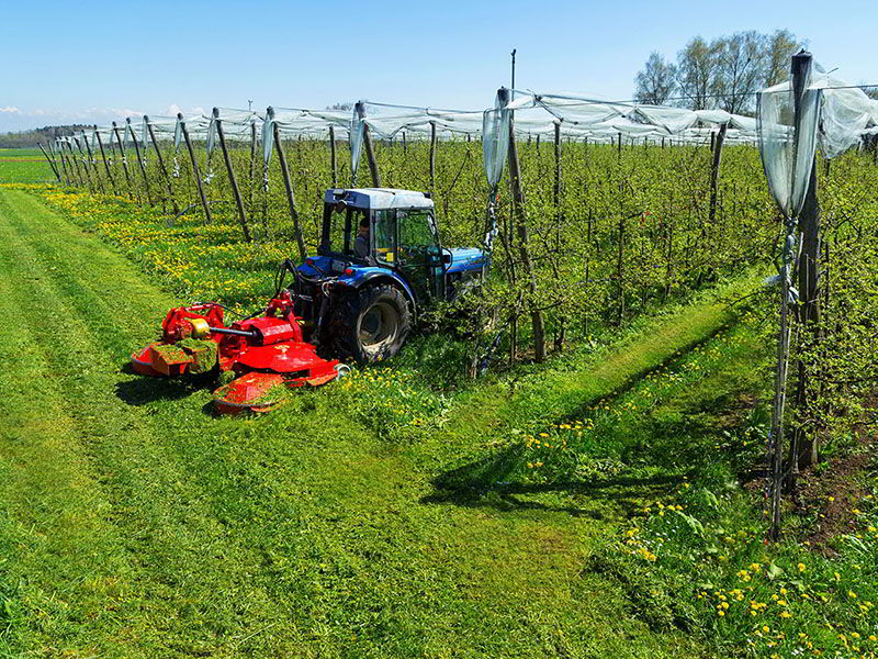 omb-rotary-mulcher-ecological-fruit-wine-growing-agriculture